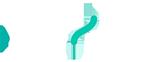 Flexi-Fi Logo